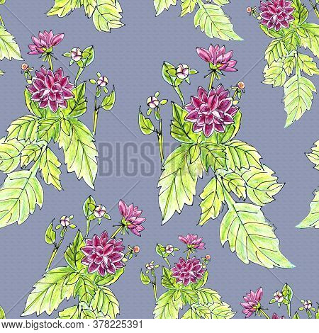 Seamless Pattern Of Flowers And Inflorescences Of Pink Dahlias On A Purple Background
