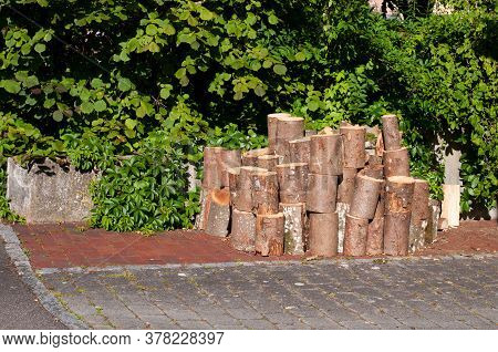 A Woodpile With Cut Tree Trunks As Firewood On A Pavement