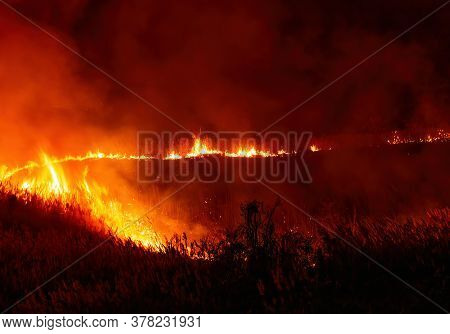 Landscape View Of Fire Burning Grass And Trees At Night