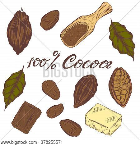 Handwritten Inscription One Hundred Percent Cocoa, Cocoa Beans, Cocoa Butter, Cocoa Seeds, Cocoa Lea