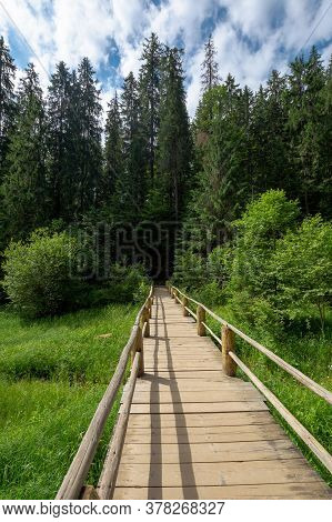 Wooden Bridge Above The Creek Among The Trees. Walkway Through Forest. Location Synevyr National Par