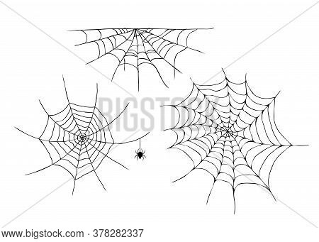 Hand Drawn Spider Web And Spider Isolated On White Background.