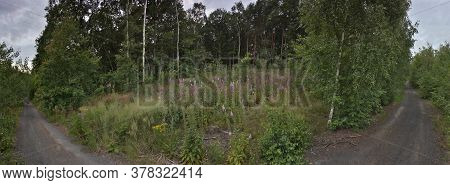 Nature In Ore Mountains Near Czech City Of Chomutov On 07th July 2020