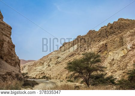 Judean desert. Ancient ruined mountains of solid limestone. Dirt road through the canyon. Israel. Misty winter day over the Dead Sea