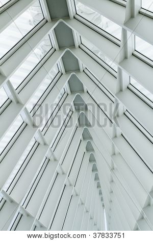 The Window Beams