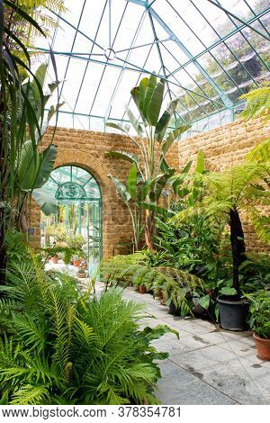 Castle Cary, Somerset. June 2020: Tropical Botanical Large Glass Greenhouse Filled With Luscious Ind