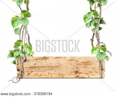 Vintage wooden board with liana branches and tropical leaves. Exotical background with wood plank, plants of jungle and copy space for text. Isolated on white background. Mock up template