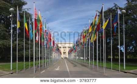 National Flags Gallery