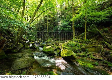 Beautiful Rocky Sundown Forest River Cascades Summer Day
