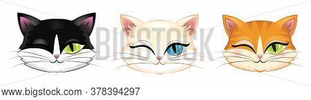 Cute Heads Of Different Cats Winking. Isolated On White.