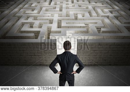 Businessman Is Searching Exit Path In Maze. Strategy And Decision Concept. View From Behind.