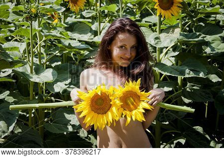 Girl Sunflower In Nature. Smiling Natural Brunette Haired Model Holding Sunflower. Cover Body With Y