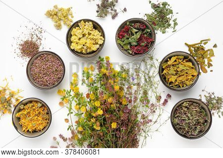 Bunch Of Medicinal Plants And Bowls Of Dry Medicinal Herbs On White Background. Top View, Flat Lay.