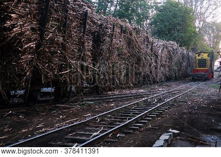 Yogyakarta, Indonesia - July 27, 2020: Sugar Cane Carriage Is Ready To Be Taken To Madukismo Sugar F