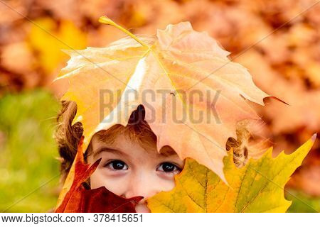 Cute Child In Beautiful Autumn Park, Concept Autumn. Close Up Portrait. Child Covers His Eyes With A
