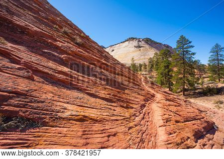 The magnificent huge canyon Zion, in the red sandstone of Navajo. Utah, United States. Narrow footpath on steep mountainside. Beautiful sunny day. The concept of active and photo tourism