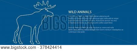 Moose Bull With Antlers Isolated On A Trendy Blue Background, The Image Of Elk , Deer Family Banner,