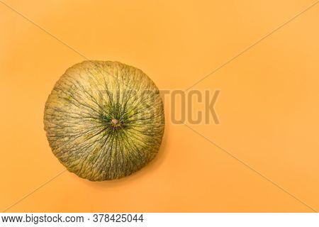 Autumn Background - Ripe Round Melon On Bright Yellow Background With Copy Space. Uzbek Autumn Melon