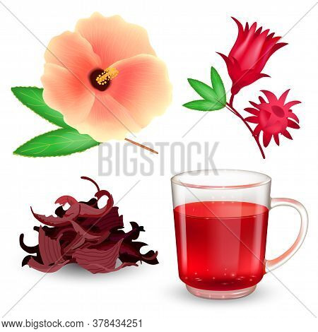 Hibiscus Tea Set. Roselle Red Tea In A Glass Mug, Dried Tea, Bract And Flower Isolated On A White Ba