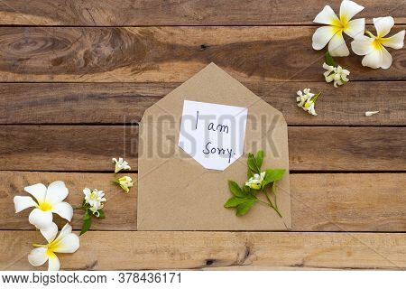I Am Sorry Message Card Handwriting In Brown Envelope With Flowers Frangipani Arrangement Flat Lay P