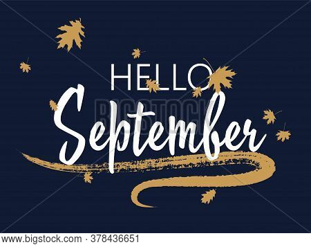 Hello September Seasonal Calligraphic Banner Vector Design With Falling Dry Leaves. Greeting Card Wi