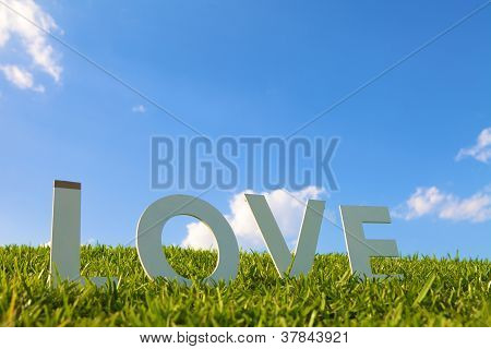 Love lettering on a grass hill