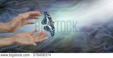 Releasing A Butterfly Into The Light  - Soul Release Metaphor - Female Hands Appearing To Let Go Of