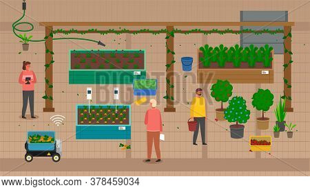 Urban Agriculture. Farmers Using Modern Technologies, Distance Control Of Growing Process. Developin
