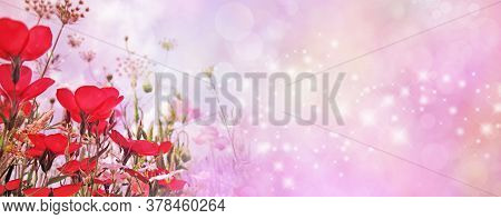 Special Occasion Red Flower Sparkle Pink Wide Banner - Random Shimmering Sparkles Flowing Across The