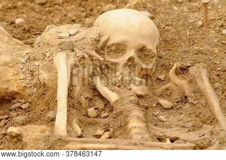 Human Skeleton Found At An Ancient Burial Place, Bones Buried In The Earth