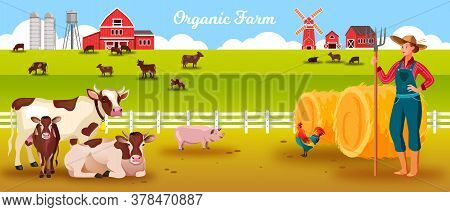 Livestock Farm Vector Landscape With Cows, Woman Farmer, Calf, Bull, Pig, Cock, Haystacks, Barn. Agr