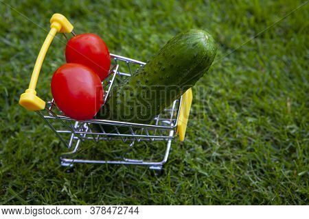 Image Of Trolley Vegetable Grass Background Day Light