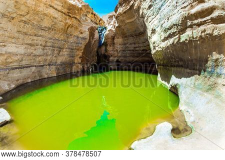 Picturesque waterfall in the middle of the Negev desert. The greenish mirror water of a small lake. The gorge Ein Avdat is formed by the Qing River. Israel. The concept of active and photo tourism
