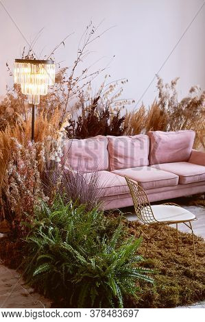 The Interior Is Eco-style. Pink Sofa With Voluminous Pillow. Moss On The Floor, Cereals, Fern, Pampa