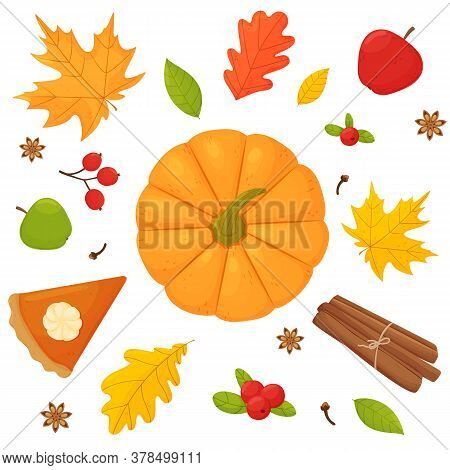 Vector Set Pumpkin Apple Pumpkin Pie Cinnamon Cranberry Clove Star Anise And Autumn Leaves On A Whit