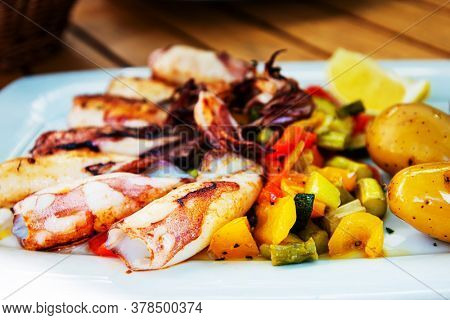 Delicious grilled whole squid with tomatoes, cucumbers slices, beetroots pieces and green dandelions served in white plate for an healthy mediterranean meal