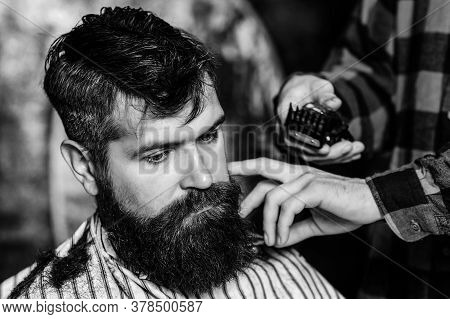Bearded Handsome Man Visiting Hairstylist. Barber Shop. Bearded Hipster Getting Hairstyle. Male Hair