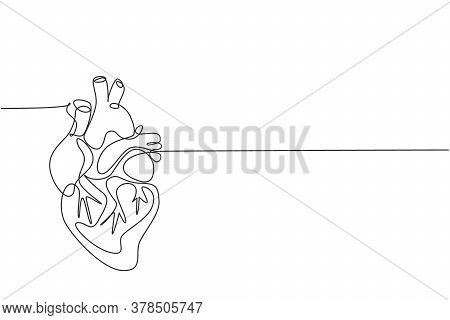 One Continuous Line Drawing Of Anatomical Human Heart Organ. Medical Internal Anatomy Concept. Moder