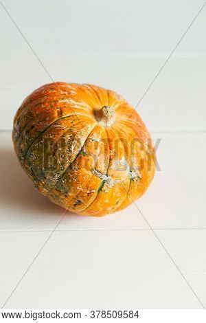Orange Halloween Pumpkins For Modern Minimal Holiday Decoration Or Thanksgiving Dinner On White Plan