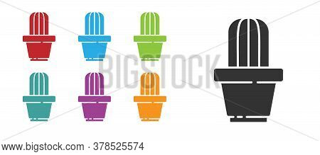 Black Cactus And Succulent In Pot Icon Isolated On White Background. Plant Growing In A Pot. Potted