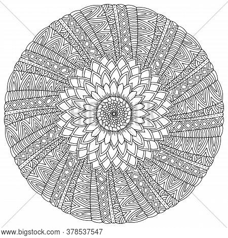 Blossom Cactus View From Above Mandala Coloring Page. Blooming Cactus Black And White Stock Vector I