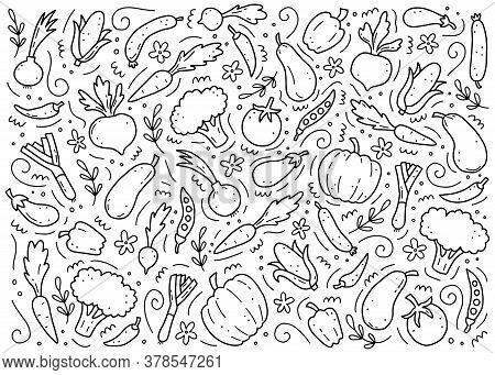 Hand Drawn Set Of Vegetable Elements, Carrot, Salad, Tomato, Onion, Lettuce, Chili. Comic Doodle Ske