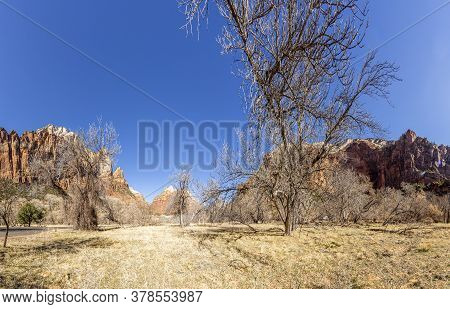 Impression From Virgin River Walking Path In The Zion National Park In Winter