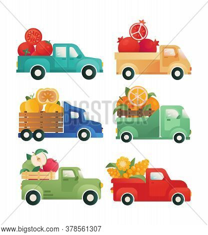 Delivery Of Vegetables, Fruits. Cars With An Open Trunk. Vector Vintage Vans, Pick-up, Trucks. Conce