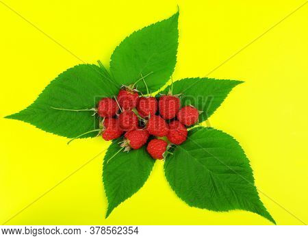 Red Ripe Raspberry With Green Leaves Isolated On A Yellow Background. Healthy Organic Food. Harvest.