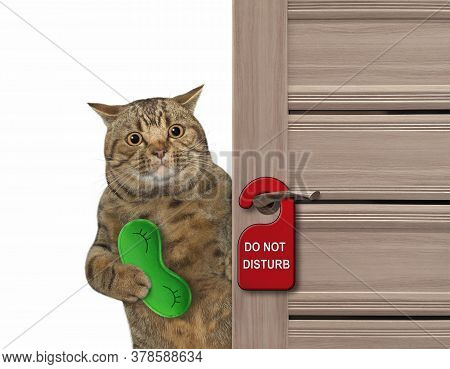 The Beige Big Eyed Cat With A Green Sleep Mask Closes The Door Of His Hotel Room.  A Red Sign With T