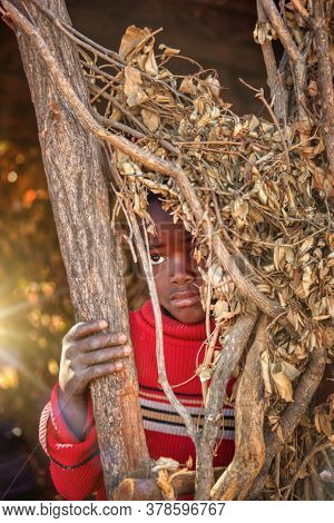 portrait of a shy african child with a jersey, hidden behind some dry branches, rural life in a village in Botswana