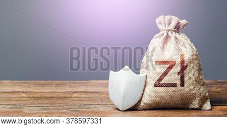 Polish Zloty Money Bag And Protection Shield. Ease Doing Business. Recovery After Crisis. Guaranteed