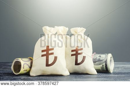 Turkish Lira Money Bags And Cash. National Gold And Foreign Exchange Reserve. Economy Monetary Polic