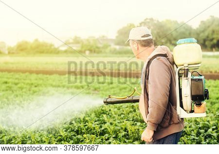 A Farmer With A Mist Sprayer Spray Treats The Potato Plantation From Pests And Fungus Infection. Agr